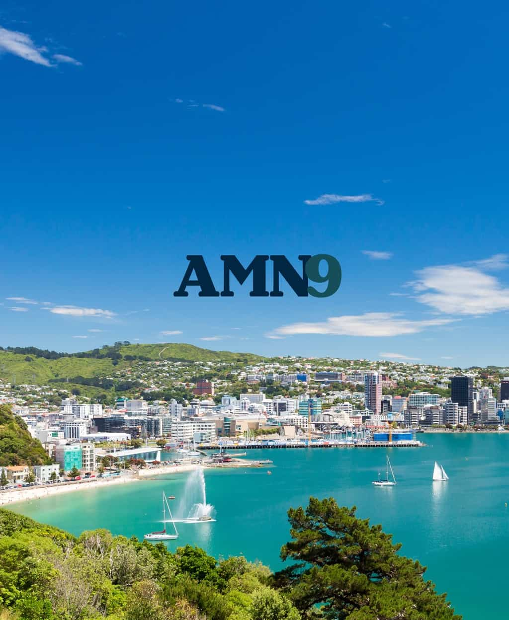 AMN9 Wellington 10-14 February 2019