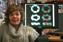 Prof Juliet Gerard - Science Leader - The Materials/Biology Interface
