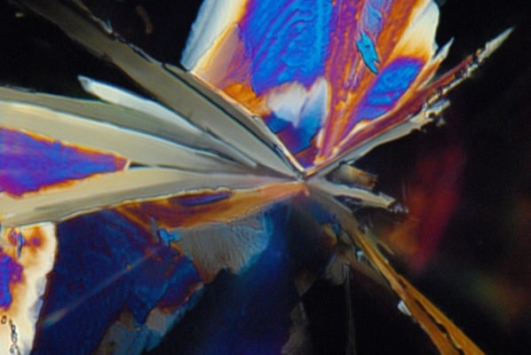 Science meets art in nanophotography