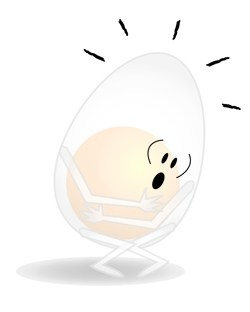 Experiment: Naked Egg