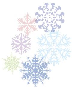 Experiment: Borax Snowflakes